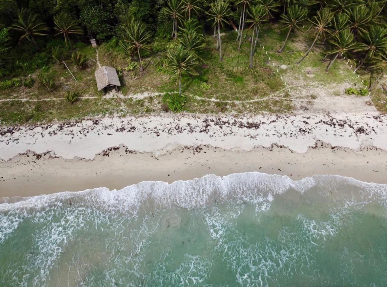 Binga-Beach-Beachfront-Overhead